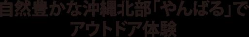 自然豊かな沖縄北部「やんばる」でアウトドア体験